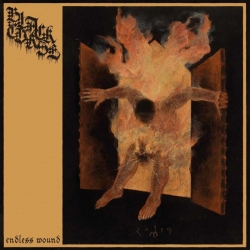 BLACK CURSE - Endless Wound DIGI CD